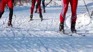 moscow russia february 01 2015 cross country skiing in winter