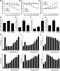 a2b adenosine receptors prevent insulin resistance by inhibiting