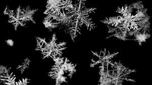 video water turns into snowflakes 13 7 cosmos and culture npr