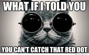 Meme What If I Told You - what if i told you you cant catch the red dot weknowmemes