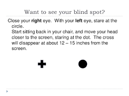 Blind Spot Left Eye Vision Topics Examples
