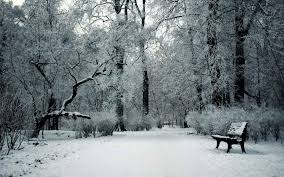 landscapes nature park garden bench winter cold forests seasons
