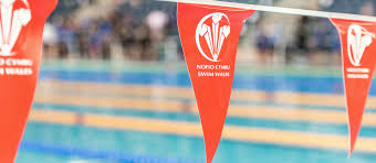 How Old Is The Welsh Flag Swim Wales Home Of Welsh Swimming U0026 Aquatics