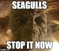 Yoda Meme Maker - angry yoda memes imgflip
