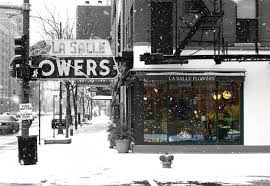flower shops in chicago best florists for s day flowers in chicago cbs chicago