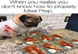 Meal Prep Meme - 24 fresh memes to kick start your day gallery ebaum s world