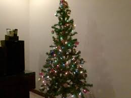 cheap christmas trees cheap christmas trees christmas day 25 throughout christmas tree