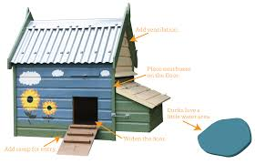 how to convert a chicken coop into a duck house modern farmer