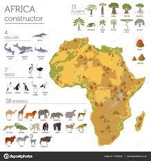 mapa de africa flat africa flora and fauna map constructor elements animals b