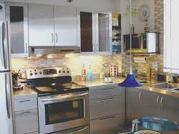 Kitchen Cabinets Handles Stainless Steel Stainless Steel Kitchen Cabinet Doors Image Collections Glass