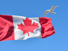 What Leaf Is On The Canadian Flag People Leaving Us Flooding Canada Cnn Video