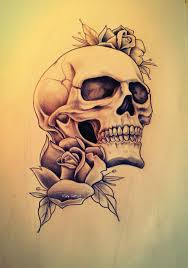 skull and roses drawing roadrunnersae
