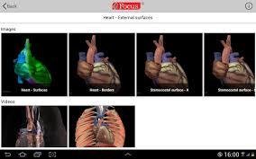 Human Anatomy Atlas Heart Digital Anatomy Atlas Android Apps On Google Play