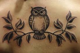 owl tattoo meaning protection owl tattoo symbolism meaning enkiverywell