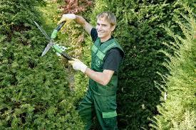 garten und landschaftsbau ausbildung garten und landschaftsbau beruf gärtner