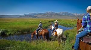 all inclusive california dude ranch hunewill guest ranch