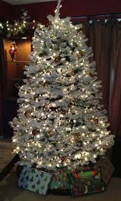 noble christmas tree 7 best noble fir christmas trees images on firs noble