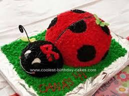 ladybug birthday cake cool ladybug birthday cake design