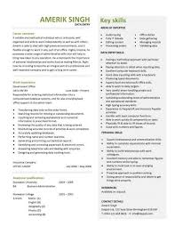 Typing Resume Data Entry Resume Templates Clerk Cv Jobs From Home Keyboard