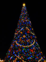 disney world christmas party 2013 olp travel news u0026 views