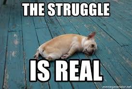 The Struggle Is Real Meme - the struggle is real tired dog meme generator