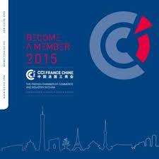 bureau veritas chine membershipbrochure2015en by chamber of commerce and industry