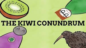 why is kiwi the name for a fruit bird and people ft soliloquy