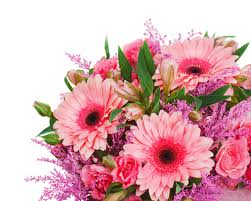 Beautiful Flower Arrangements by Best Florist Florists In Australia Creating Beautiful Flower