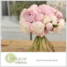 peony bouquet blush peony bouquet intrigue teaches