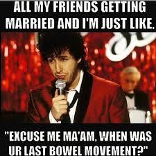 Nowaygirl Memes - awesome top 10 funniest olivia memes nowaygirl olivia wallpaper
