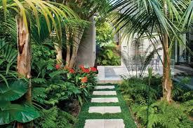Tropical Plants For Garden - modern garden with tropical plants and pathway tips for tropical