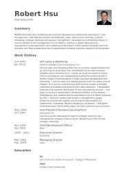 vp sales u0026 marketing resume samples visualcv resume samples database