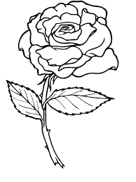 perfect rose coloring pages for coloring for kids with rose