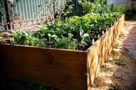 everything you need to start a raised bed garden this fall