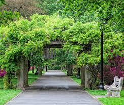 brooklyn botanical garden wedding elizabeth anne designs the