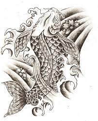 drawn koi carp awesome fish pencil and in color drawn koi carp