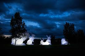 Zoo Light Houston by Giant Inflatable Rabbits Invade Houston
