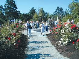 Botanical Gardens Seattle Pacific Horticulture Society Highline Seatac Botanical Garden