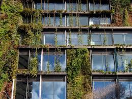 Bambus Garten Design 23 Best Greening Of Facades Images On Pinterest Facades