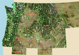 Oregon Topographic Map by Ore Rock On Oregon Rockhounds Online Dvd Of Rockhounding Sites In