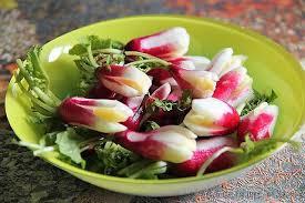 cuisiner les radis roses recette radis à la croque au sel la cuisine familiale un plat