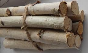 birch tree decor 10 birch logs wood sticks birch tree decor for fireplace craft