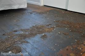 guest bedroom carpet removal house updated