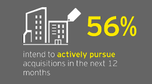 how can my business capitalize ey transaction advisory services home ey global