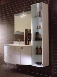 Bathroom Cabinet Online by Several Considerations Before Buying Bathroom Vanity Cabinets