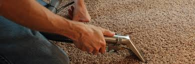 Upholstery Cleaning Gold Coast Beachem Carpet Care Carpet Cleaning In Pittsburgh Pet Stain