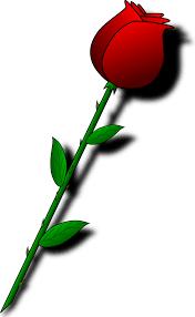 valentine roses clip art u2013 101 clip art