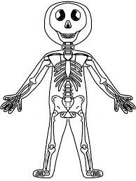 halloween skeleton coloring pages skeleton clip art for kids u2013 fun for halloween