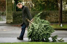 when do you take down the christmas tree