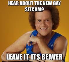 Sitcom Meme - hear about the new gay sitcom leave it its beaver gay richard
